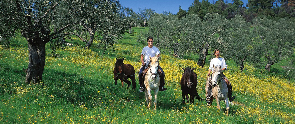 Horse-riding-pelion